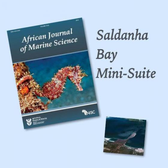 Saldanha Bay - A mini-suite of papers