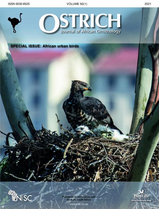 Special Issue: African urban birds