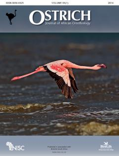 Ostrich Journal Cover Competition Winner