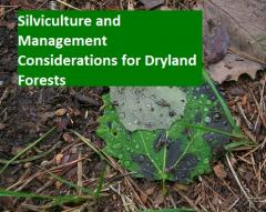 Silviculture and Management Considerations for Dryland Forests