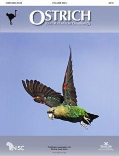Ostrich – Best student paper